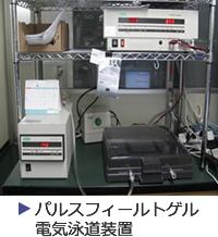 パルスフォールトゲル電気泳道装置