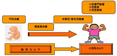 胎児カルテ(図1)
